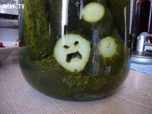 ảnh rau củ quả,rau củ hài hước,ảnh hài hước,rau xanh