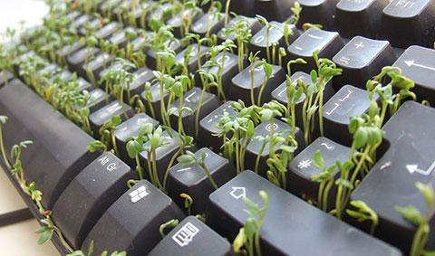 9 ý tưởng thú vị tận dụng chiếc bàn phím hỏng