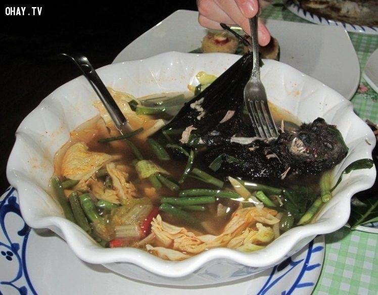 ảnh món ăn,món ăn kinh dị,món ăn kinh tởm,món ăn lạ