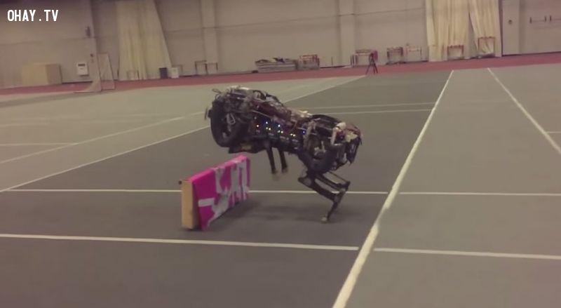 ảnh báo vượt chướng ngại vật,báo robot,chó robot,công nghệ robot,sản xuất robot