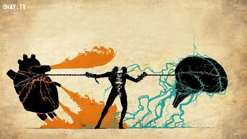 lý trí tình cảm