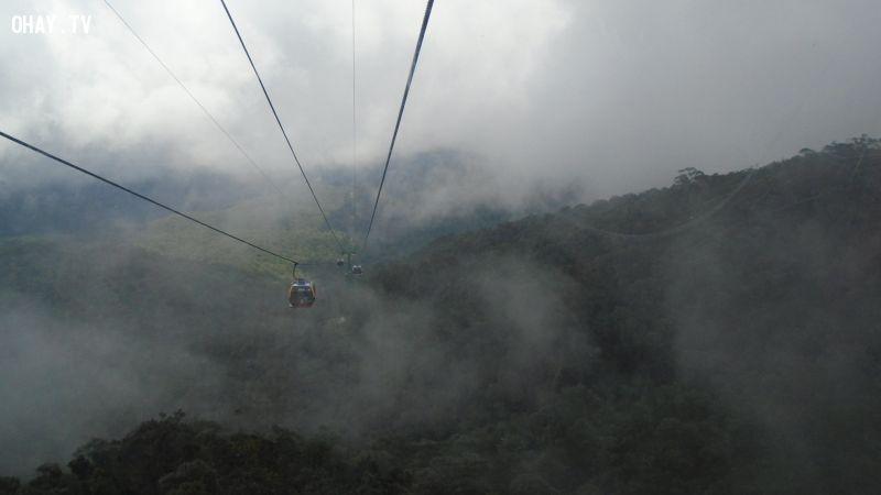 Từ cáp treo có thể ngắm nhìn toàn bộ núi non, cây cối trong làn mây huyền ảo
