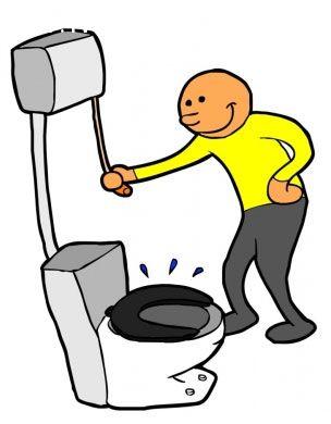 ảnh toilet,có thể bạn chưa biết