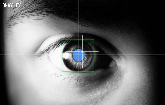 ảnh nhìn mắt đoán suy nghĩ,đọc suy nghĩ qua ánh mắt,ngôn ngữ cơ thể,ánh mắt,đoán suy nghĩ qua ánh mắt,thần kinh học,đọc suy nghĩ người khác
