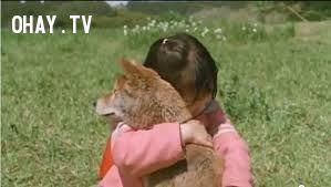 ảnh Câu Chuyện Có Thật,Động Đất,Nhật Bản,Ryuichi Inomata,chú chó mari,chó trung thành,video cảm động