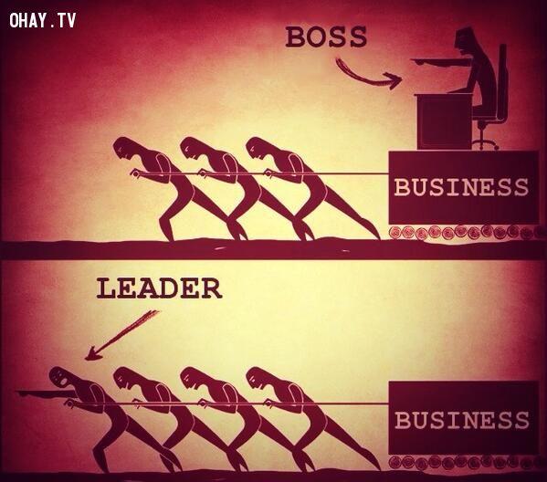ảnh ông chủ và người lãnh đạo,leader và boss,kỹ năng lãnh đạo