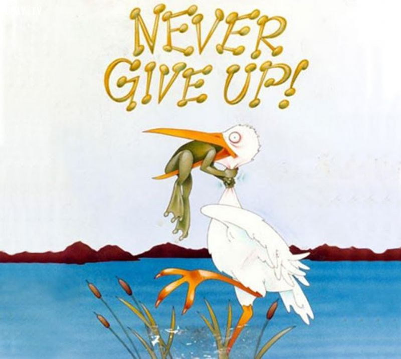 không bao giờ bỏ cuộc