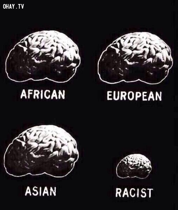 phân biệt chủng tộc