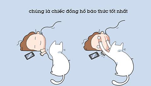 Bộ hình vui nhộn về 10 lợi ích của việc nuôi mèo