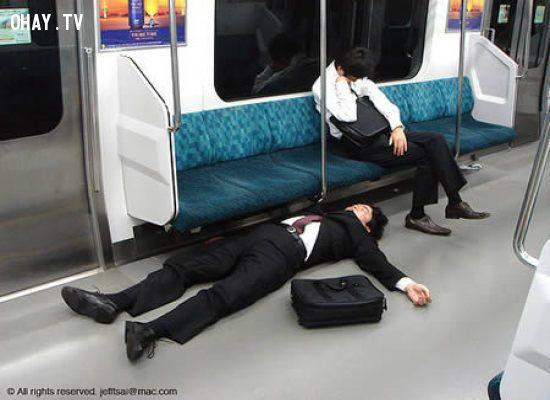 Tranh thủ ngủ mọi lúc mọi nơi.