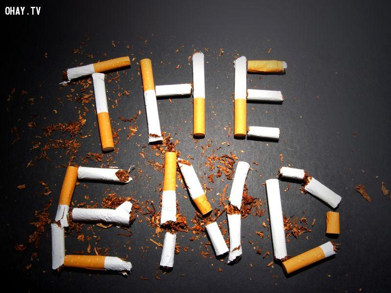 ảnh hút thuốc lá,tác hại của hút thuốc lá
