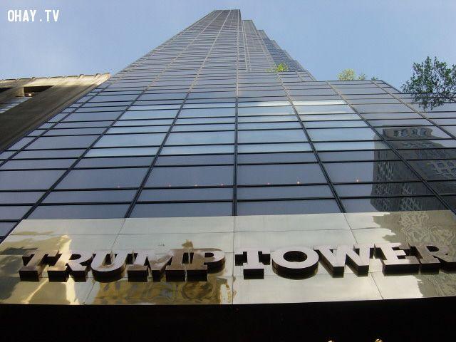 ảnh donal trump,trumptower,tổng thống mỹ,tranh cử tổng thống