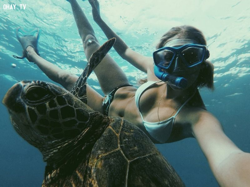ảnh camera,camera 8 ten,camera quay được dưới nước