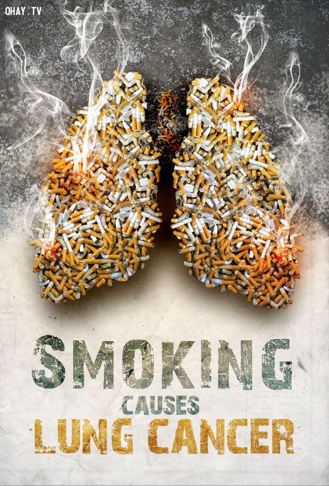 ảnh quảng cáo hay,poster sáng tạo,poster thuốc lá,tác hại của thuốc lá,thuốc lá