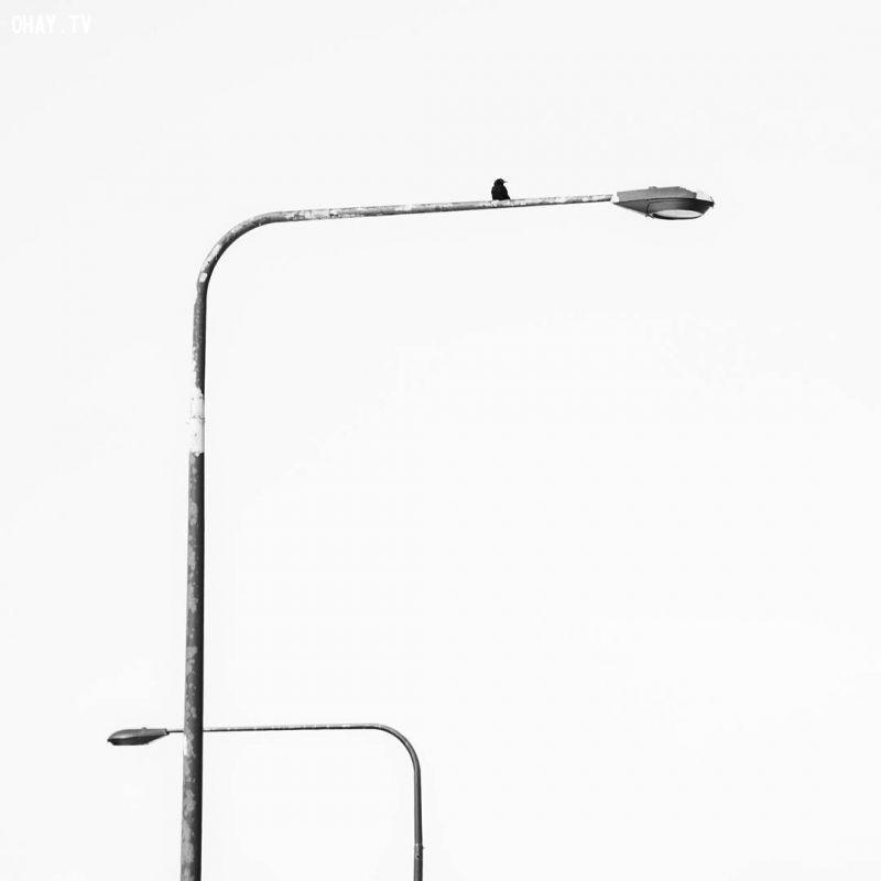 ảnh sáng tạo,không gian tiêu cực,nhiếp ảnh,Phillips