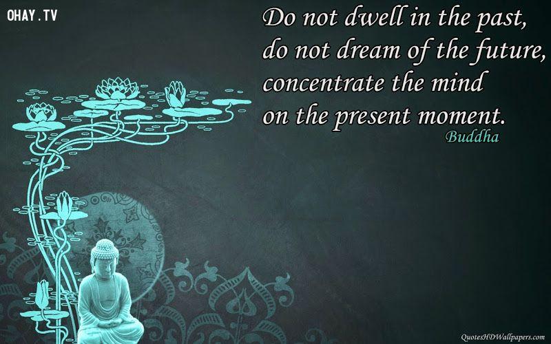 ảnh lời Phật dạy,bài học cuộc sống,suy ngẫm,Đức Phật,chân lý cuộc đời