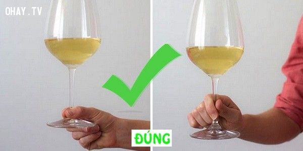 Cách cầm ly rượu đúng