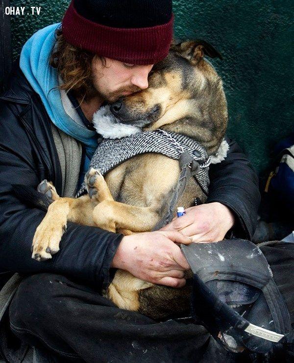 ảnh cộng đồng mạng,chó trung thành,hình ảnh cảm động