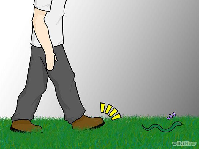 Avoid Snakes Step 5.jpg