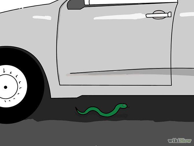 Avoid Snakes Step 8.jpg