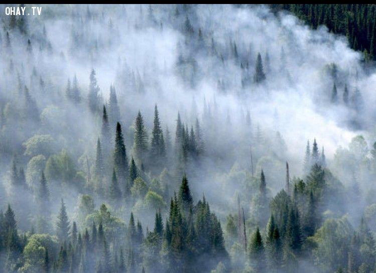 Nga là quốc gia có không khí trong lành nhất