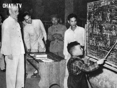 ảnh giáo dục Việt,xa rời thực tế,tư duy ngược,chặn gốc thả ngọn,giáo dục việt nam,giáo dục
