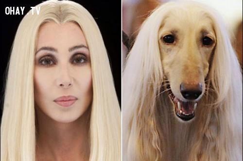 Diễn viên Cher