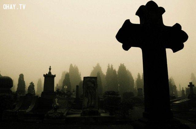 Chết trẻ, chết yểu và chết già – Cái chết nào bất hạnh nhất?