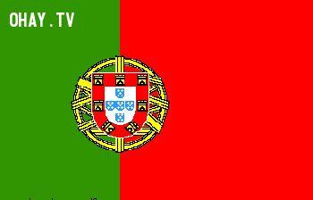 Tiếng Bồ Đào Nha là một trong các ngôn ngữ