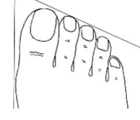 Bàn chân Roman, bạn sở hữu một vóc dáng đẹp , bạn thích đi, thích trải nghiệm