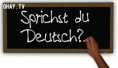 Tiếng Đức cũng là một ngôn ngữ nên lựa chọn