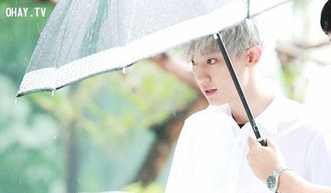 Nhân cách của Chanyeol, liệu có tồi tệ?