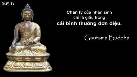 100 lời dạy của Đức Phật giúp bạn nhận ra chân lý cuộc đời – Cùng đọc, ngẫm và ngấm!