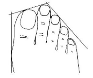 Bàn chân Hy Lạp, bạn năng động, nhiệt tình, thích động viên khích lệ người xung quanh bạn