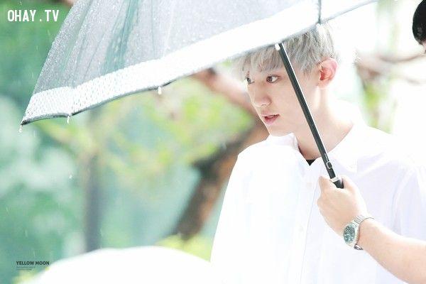 ảnh Chanyeol,EXO,kpop