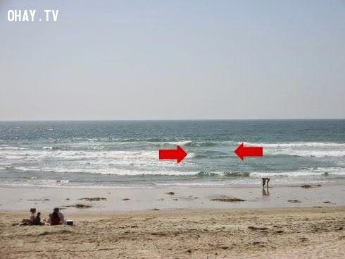 Kỹ năng sinh tồn: Lưu ý khi tắm biển tránh chết đuối
