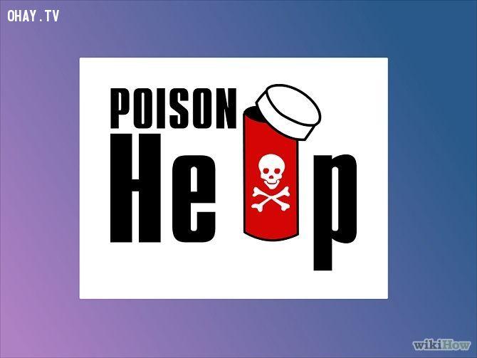 ảnh kỹ năng sinh tồn,ngộ độc,bị ngộ độc phải làm gì,sơ cứu ngộ độc,ngộ độc thực phẩm