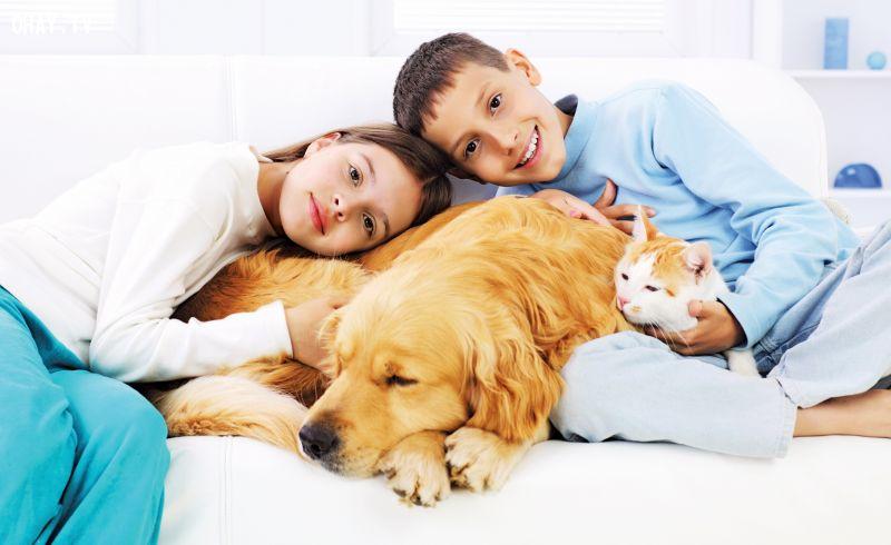ảnh thú cưng,yêu động vật,nuôi thú cưng