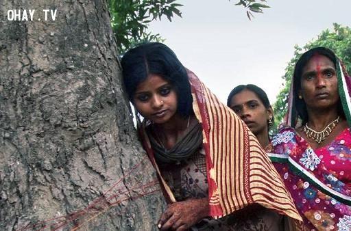 Phong tục cưới Ấn độ cưới cây