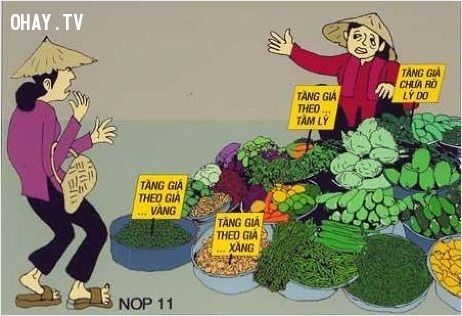 việc tăng giá rau bởi những lý do vô lý