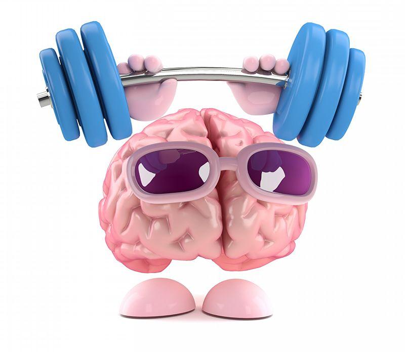 ảnh não bộ,luyện não khỏe mạnh,rèn não,luyện não,bộ não