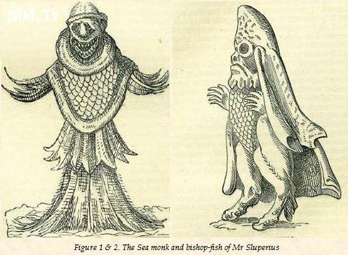 ảnh thủy quái,quái vật,thủy quái kinh dị,thủy quái nổi tiếng