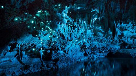 Ánh sáng tuyệt đẹp từ một hang động của New Zealand