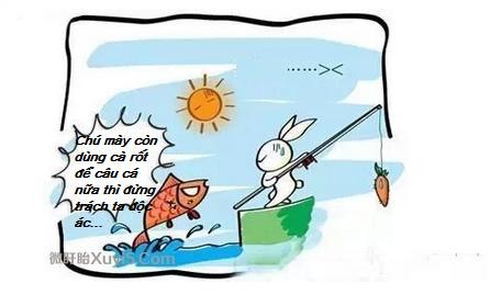 Con thỏ câu cá bằng cà rốt