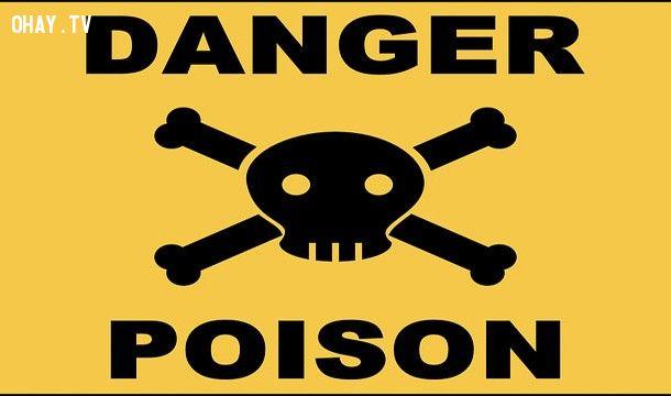 thuốc lá có nhiều chất độc nguy hiểm