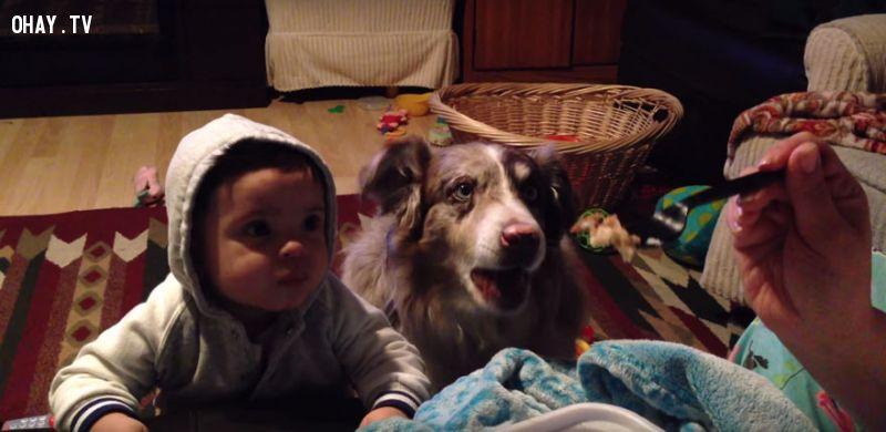Một bà mẹ ở Utah cố gắng dạy cậu con trai của mình nói