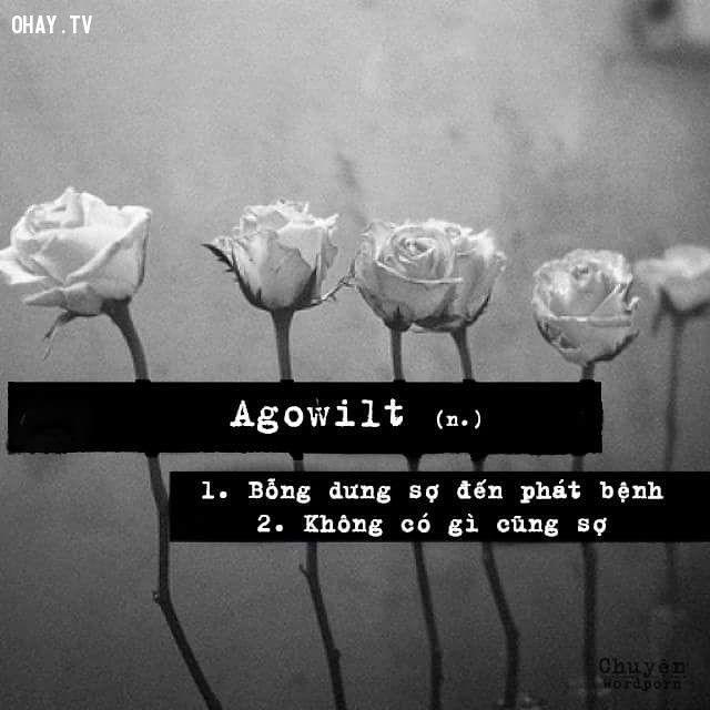 Wordporn Agowilt
