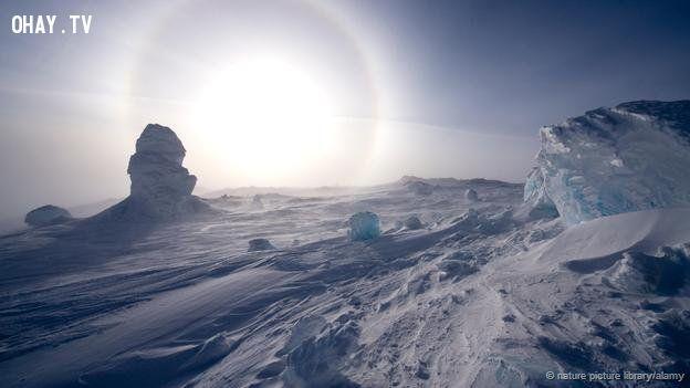 Sub-zero temperatures of Antarctica? No problem