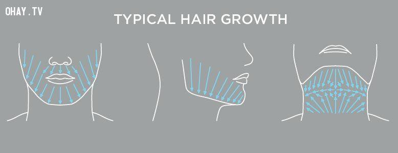 ảnh cạo râu,cách cạo râu,hướng dẫn cạo râu,cạo râu đúng cách