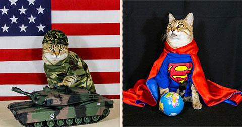 """Chú mèo Booboo với phong cách thời trang """"sành điệu"""" nhất thế giới"""